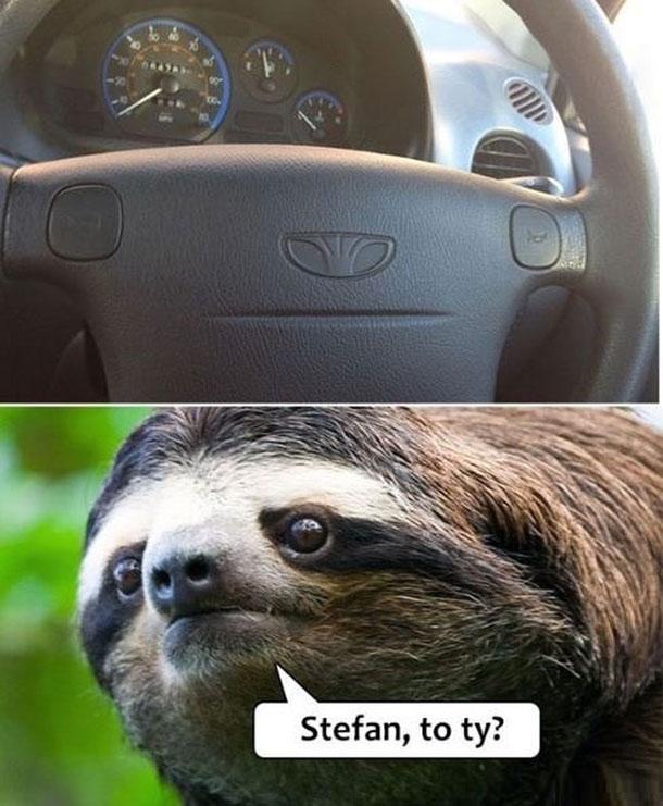 Stefan?
