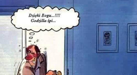 Sen Godzilli :D