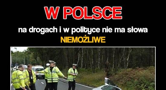W Polsce wszystko może się zdarzyć