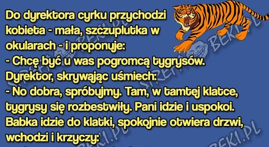 Opieka nad tygrysami przy tej pracy to pikuś