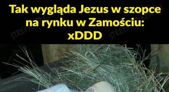 Jezus w szopce na rynku w Zamościu xDDD