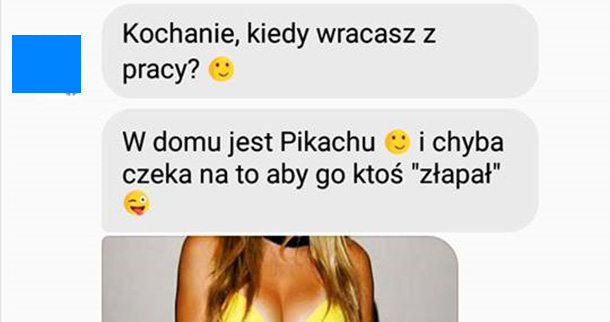 Pikachu w domu