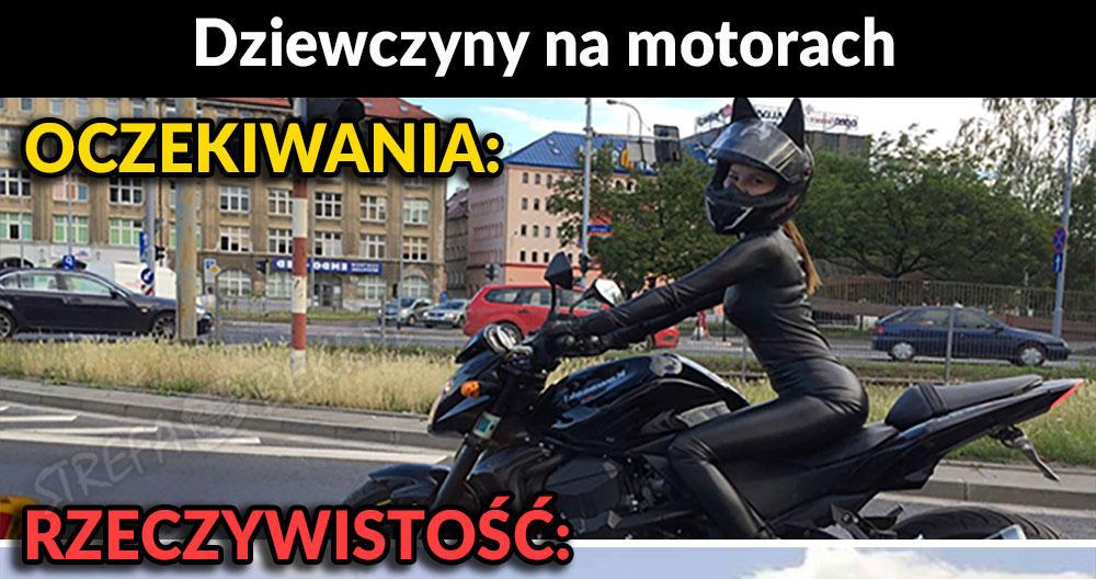 Kociak na motorze