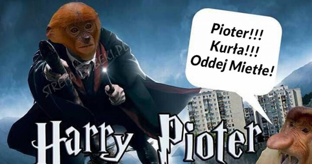 Harry Pioter