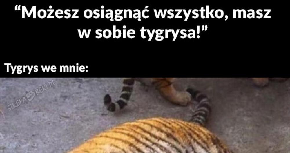Masz w sobie tygrysa!