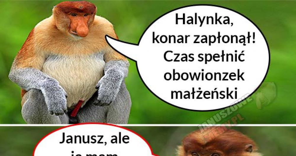 Kiedy Januszowi zapłonie konar :D