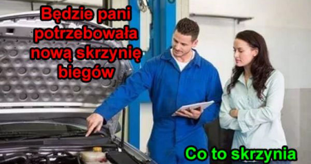 Laska u mechanika