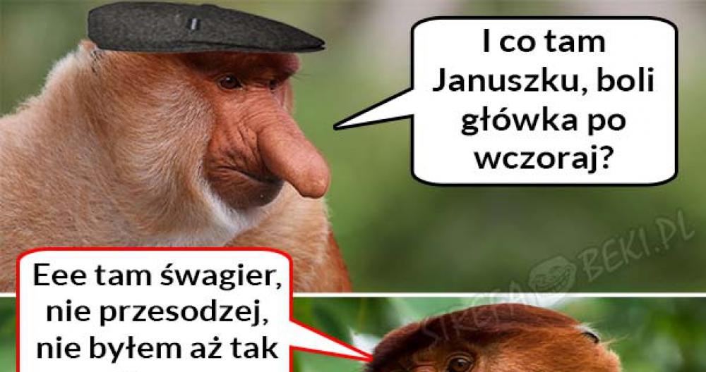 Janusza zabalował :D